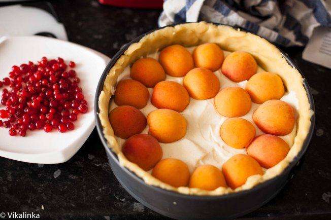 Crumb Apricot Cheesecake